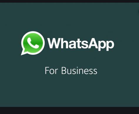 Whatsapp Business Download